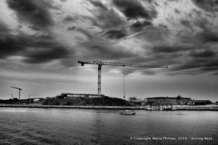 Crane at Punta Sabioni
