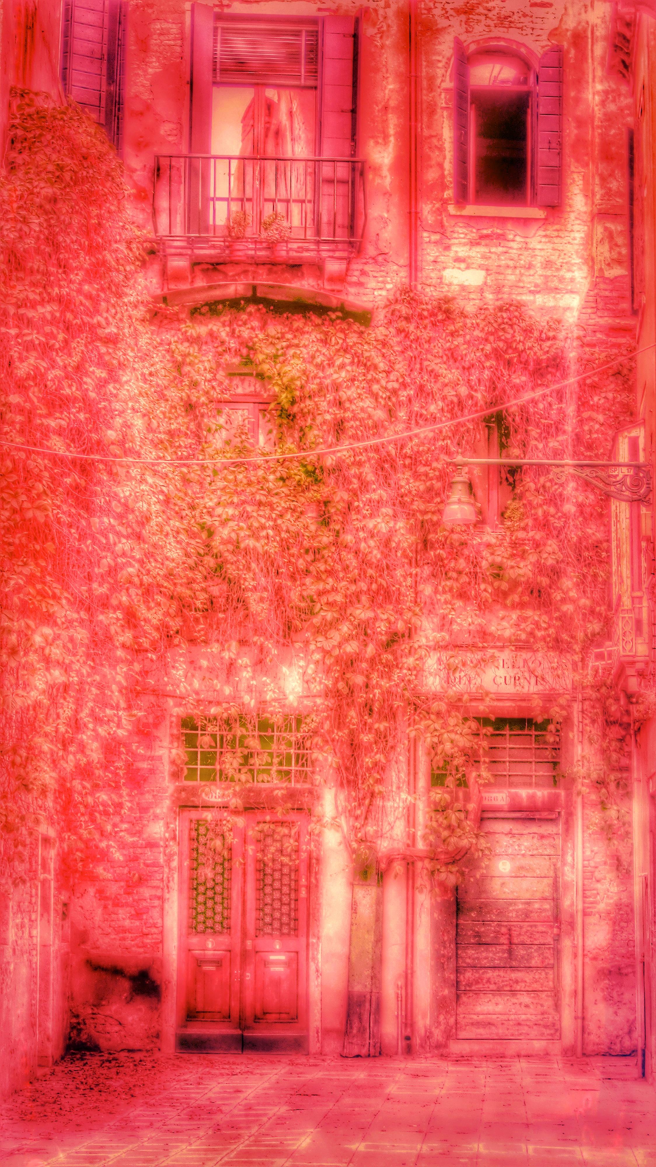 Painted Venice: Crimson